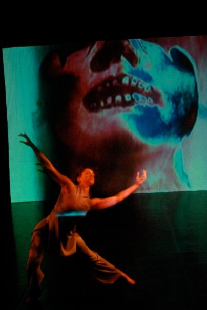 Telling Stories: dance that speaks volumes